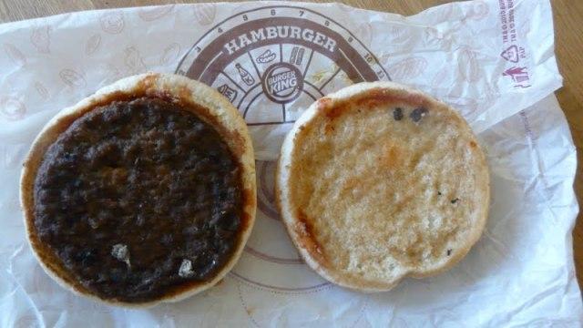 Hamburger depois de 6 meses em temperatura ambiente