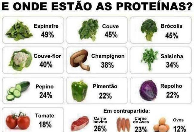 alimentos dieta proteina